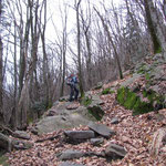 Nel bosco sopra S. Agata