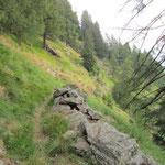 Sentiero per Piöv di Fuori