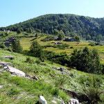 Cortascio e Campo 1019 m