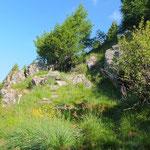 Sentiero per l'Alpe Pisciarotondo