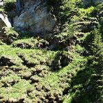 Passaggio esposto a Raiada 1586 m