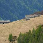 Alpe Bassa 1744 m dal Passo della Bassa