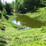 Grasso di Lago 1736 m
