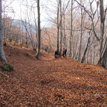 Discesa verso i Monti di Caviano