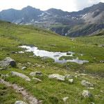 Hinnerdistel 2480 m
