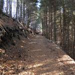 Sul sentiero per il Monte Nudo