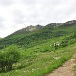Foppa 1562 m
