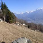 Albarello 951 m