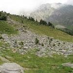 Inizia a Piöv di Dent la salita verso la Bocchetta Alta