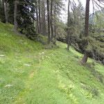 Sentiero Alp de Crasteira - Alp de Quarnei