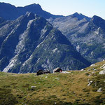 Alpe a 2095 m