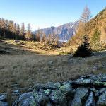 Alp di Campel Alt