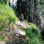 Nuovo sentiero Alp de Martum - Piz Martum