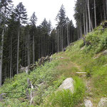 Sentiero per l'Alp de Crasteira
