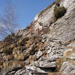 Scalinata sotto il Monte del Corgell