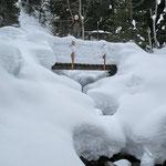 Sul sentiero Dötra - Bolla del Corno 1412 m
