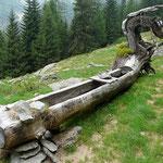 Alpe a 1567 m