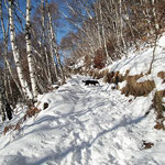 Sentiero per La Bassa