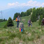 ... arriviamo di nuovo in Ticino all'Alpe Girso