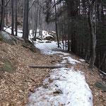 Sul sentiero Monte Brè - Cardada