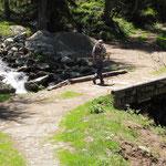 Sentiero per l'Alpe Ravina