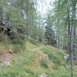 Sentiero Alpe Legrina - Alpe Matro Cáuri