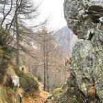 Vicino all'Alpe di Morisciolo
