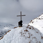 Croce del Bosc 2315 m