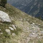 Scendiamo per l'Alp de Naucal