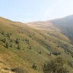 Valle del Ciápelon