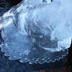 Forme di ghiaccio