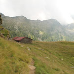 Siamo di nuovo all'Alp de Calvaresc-Desora 2131 m