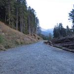 Prepiantò (Guald) 1485 m
