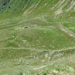 Alpe sotto il Mottone della Tappa (It)