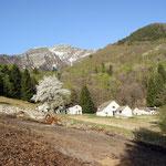 Mondella 920 m