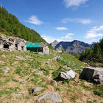 Alpe Orgnana 1550 m