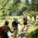 Alp de Besarden 1040 m