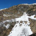 Valanga a Faedo 1351 m
