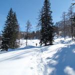Dall'Alpe Cadonighino andiamo all'Alpe Cadonigo