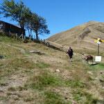 Alpe Agario