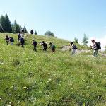 Per l'Alpe di Compiett