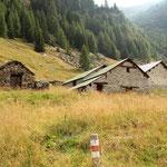 Alp de Calvaresc-Sot 1837 m