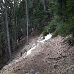 Sentiero Cascine - Sobrio