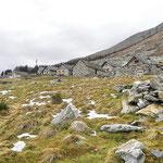 Alpe Bardughè 1639 m