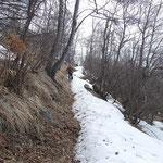 Sul sentiero Cardada - Cimetta