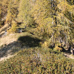 .... deviazione per Cappellone, proseguiamo seguendo la cresta sul sentiero che passa vicino al rudere...