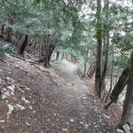 Sul sentiero che porta a Albio