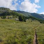 Alpe di Prou 2015 m