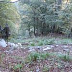 Ripida salita ca 700m di dislivello per la Capanna Cornavòsa