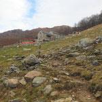 Alpe Cedullo 1287 m (Agriturismo)
